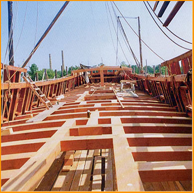 Deck_Large.jpg
